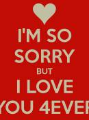 I'm Sorry... But I Love You !